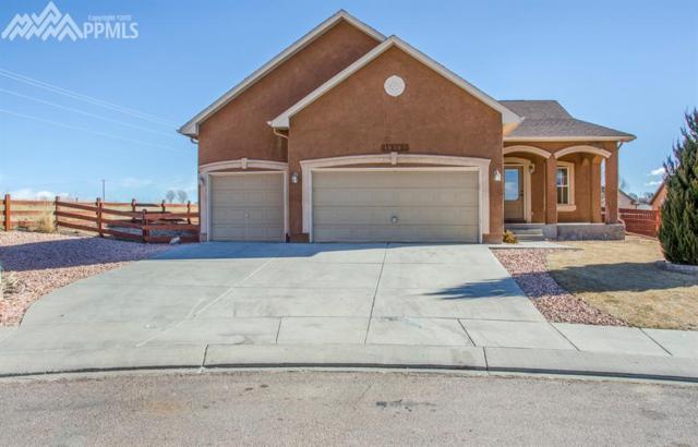 10303 Buck Rake Court, Fountain, CO 80817 (#1278799) :: 8z Real Estate