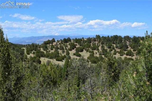 County Road 84, Florence, CO 81226 (#1299703) :: The Treasure Davis Team