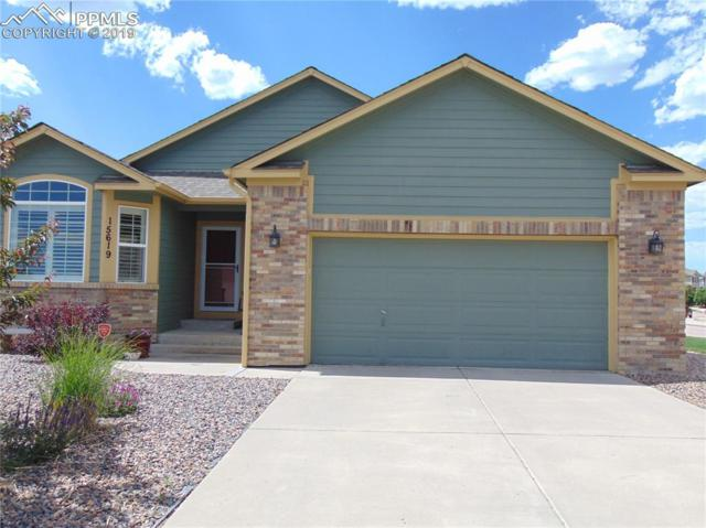 15619 Paiute Circle, Monument, CO 80132 (#1315743) :: Action Team Realty