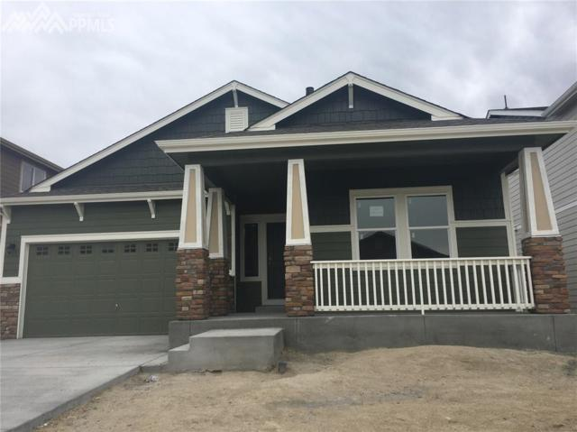 1755 Sandy Shore Lane, Monument, CO 80132 (#1321064) :: Colorado Home Finder Realty