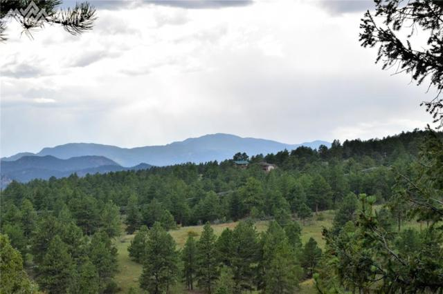 304 Bear Mountain Road, Florissant, CO 80816 (#1334267) :: The Hunstiger Team