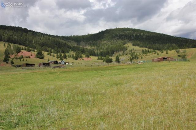 2572 County 861 Road, Victor, CO 80860 (#1339859) :: 8z Real Estate