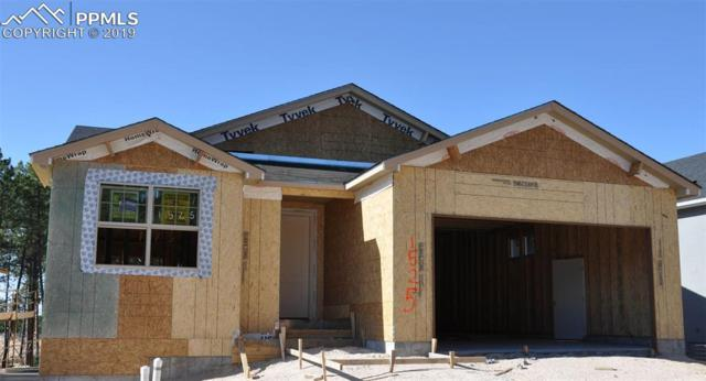 1525 Catnap Lane, Monument, CO 80132 (#1390629) :: Action Team Realty