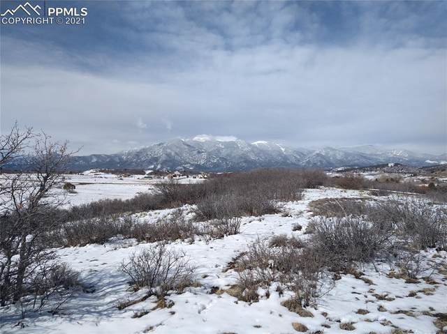 00 Palumar Court, Colorado City, CO 81019 (#1403199) :: CC Signature Group