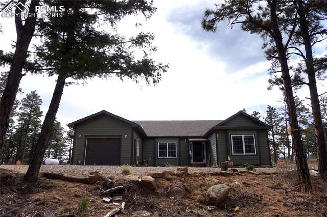 17890 County 51 Road, Trinidad, CO 81024 (#1404896) :: Tommy Daly Home Team