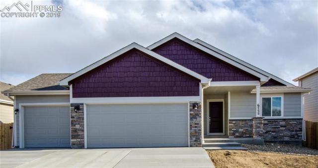 6755 Mandan Drive, Colorado Springs, CO 80925 (#1406559) :: 8z Real Estate