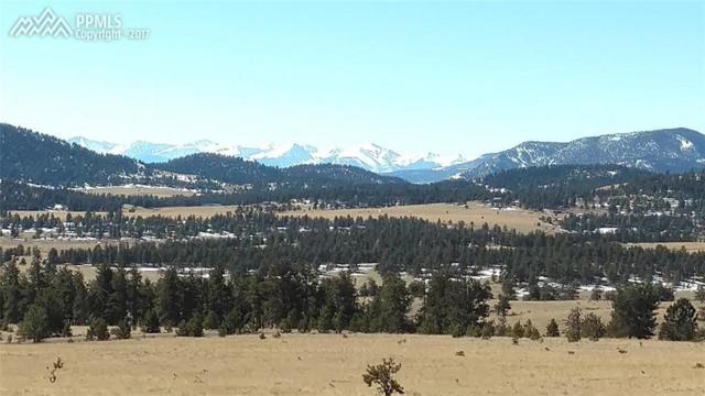 TBD Lakeview Trail, Guffey, CO 80820 (#1415362) :: 8z Real Estate