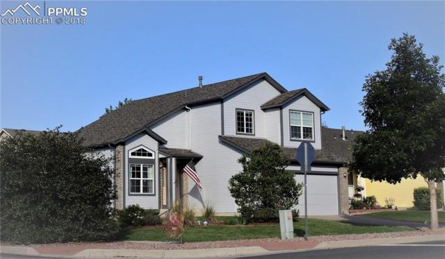 6151 Oakwood Boulevard, Colorado Springs, CO 80923 (#1423651) :: Harling Real Estate