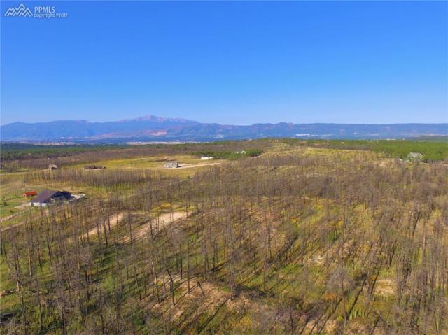 13590 Holmes Road, Colorado Springs, CO 80908 (#1450691) :: 8z Real Estate