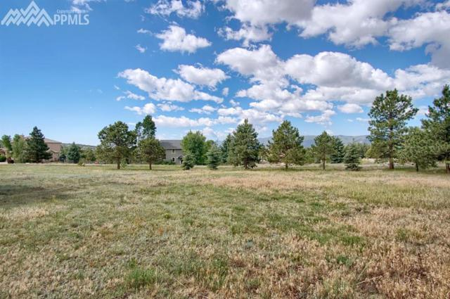 780 El Dorado Way, Monument, CO 80132 (#1481983) :: Action Team Realty