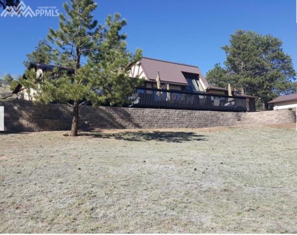 101 Manchester Place, Florissant, CO 80816 (#1492744) :: Action Team Realty