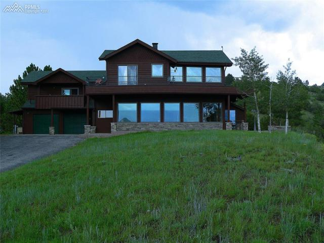 168 Bunker Hill Circle, Westcliffe, CO 81252 (#1494600) :: 8z Real Estate