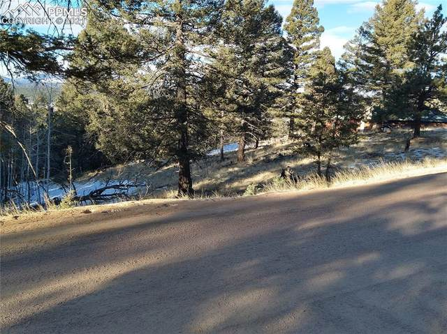 167 Southpark Road, Florissant, CO 80816 (#1519652) :: The Dixon Group