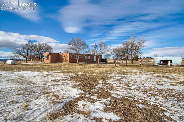 6095 W Condor Road, Peyton, CO 80831 (#1526217) :: Action Team Realty