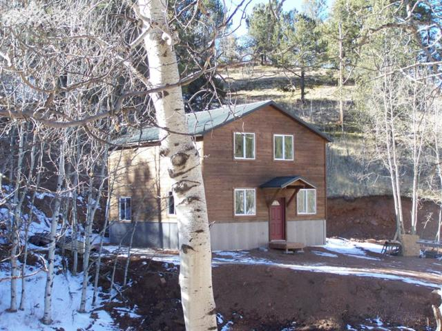 325 Willow Road, Divide, CO 80814 (#1539088) :: 8z Real Estate