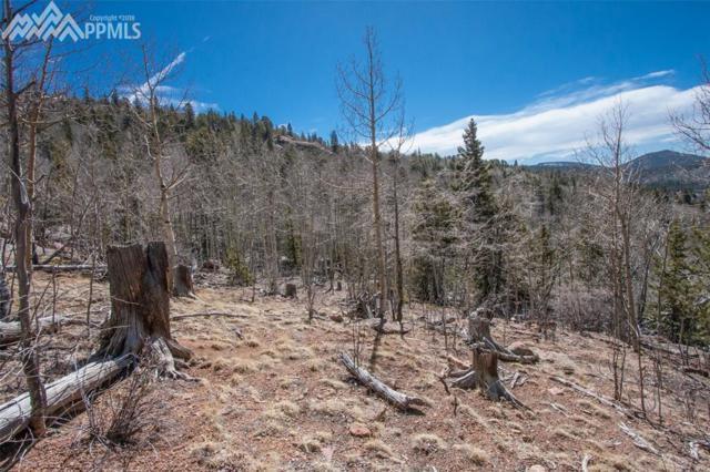 S Highway 67 Highway, Cripple Creek, CO 80813 (#1593814) :: 8z Real Estate