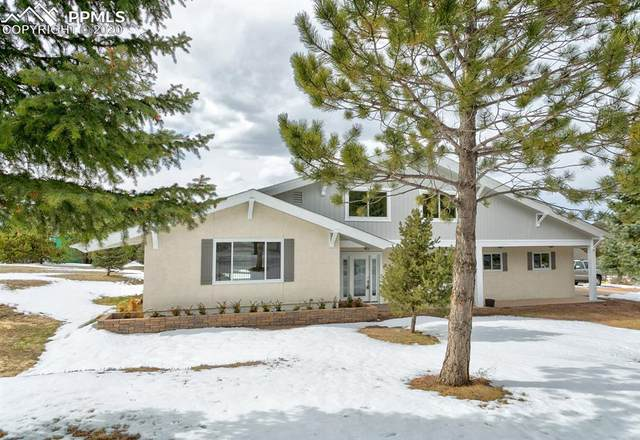 490 Wolverine Way, Monument, CO 80132 (#1602790) :: The Harling Team @ Homesmart Realty Group