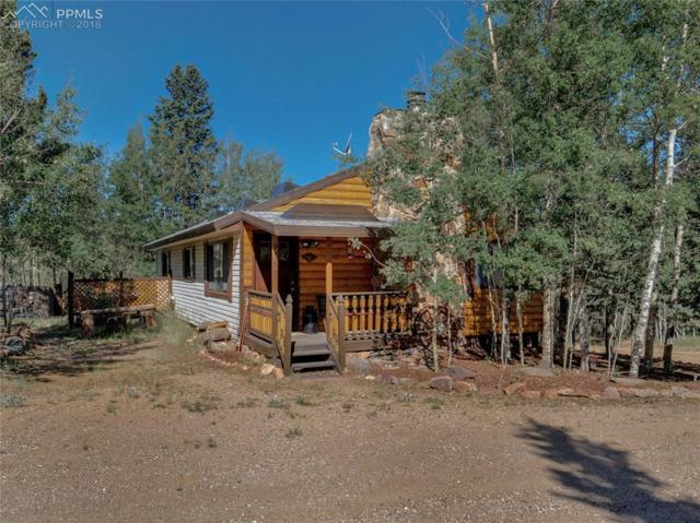 9757 S Highway 67 Highway, Cripple Creek, CO 80813 (#1623810) :: Action Team Realty