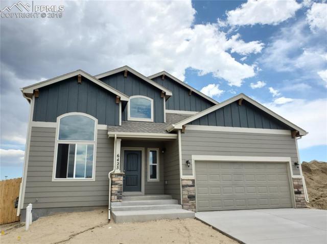 6425 Lamine Drive, Colorado Springs, CO 80925 (#1625637) :: Fisk Team, RE/MAX Properties, Inc.