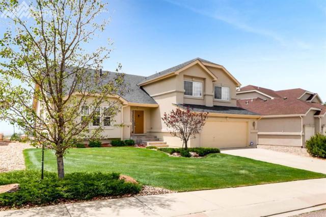 723 Fox Run Circle, Colorado Springs, CO 80921 (#1662808) :: 8z Real Estate