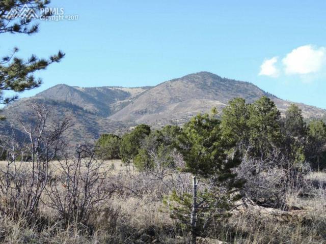 TBD Vista View Road, Guffey, CO 80820 (#1663308) :: 8z Real Estate