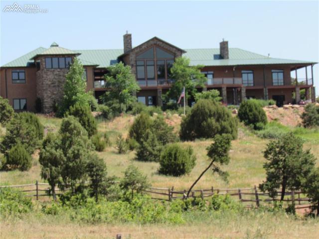 14525 Aiken Ride View, Colorado Springs, CO 80926 (#1665338) :: The Cutting Edge, Realtors