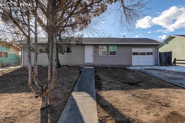 1442 Luna Drive, Fountain, CO 80817 (#1698322) :: Action Team Realty