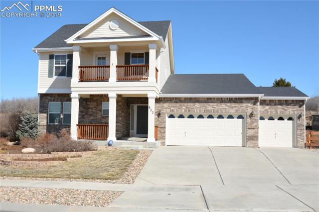 822 Coyote Willow Drive, Colorado Springs, CO 80921 (#1700244) :: Action Team Realty