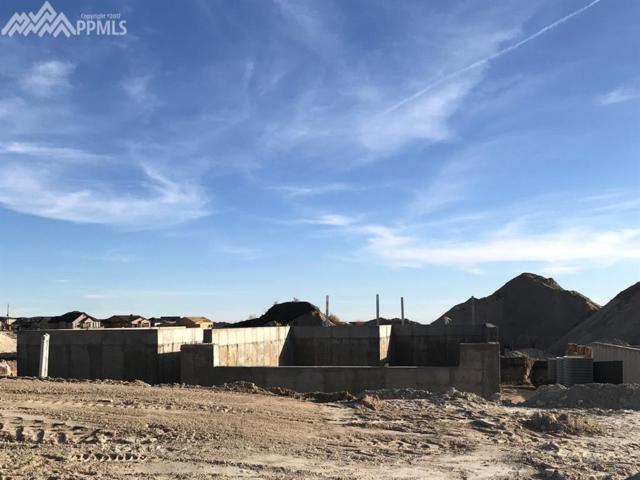 4313 Captain Jack Lane, Colorado Springs, CO 80924 (#1727810) :: 8z Real Estate