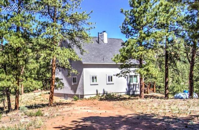 267 S Vermillion Road, Lake George, CO 80827 (#1736123) :: 8z Real Estate