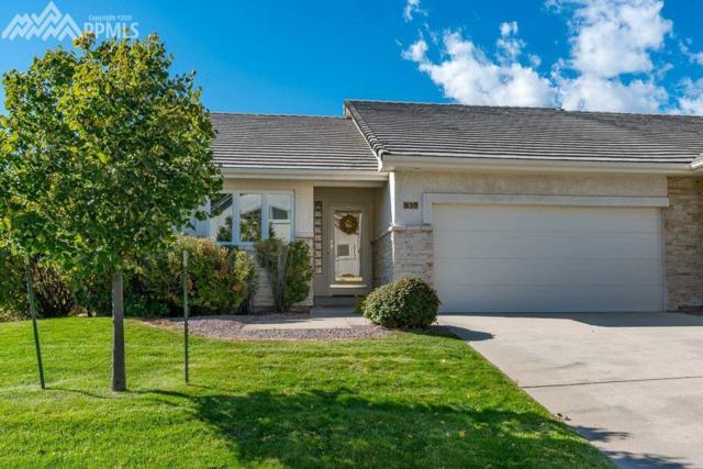 839 Shrine View, Colorado Springs, CO 80906 (#1743709) :: 8z Real Estate