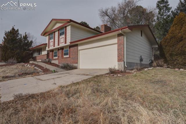 2724 Penacho Circle, Colorado Springs, CO 80917 (#1784657) :: Jason Daniels & Associates at RE/MAX Millennium