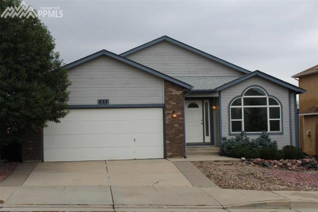 427 Millstream Terrace, Colorado Springs, CO 80905 (#1796517) :: 8z Real Estate