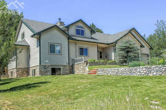 431 Black Bear Trail, Woodland Park, CO 80863 (#1814418) :: The Peak Properties Group