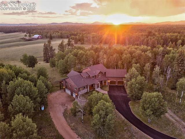 1471 Cedar Mountain Road, Divide, CO 80814 (#1854901) :: Fisk Team, RE/MAX Properties, Inc.