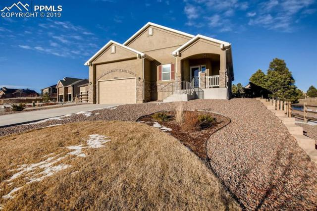 19963 Lindenmere Drive, Monument, CO 80132 (#1867142) :: Action Team Realty