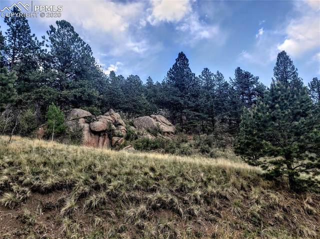 1056 Canyon Drive, Florissant, CO 80816 (#1874818) :: Tommy Daly Home Team
