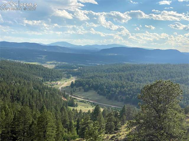 TBD Wildhorn Road, Florissant, CO 80816 (#1894558) :: The Treasure Davis Team