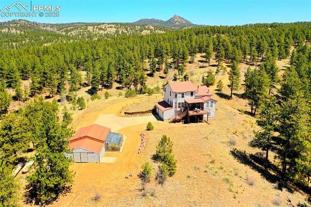 1483 County Road 31 Road, Florissant, CO 80816 (#1895393) :: CC Signature Group