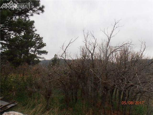 007 Roosevelt Street, Palmer Lake, CO 80133 (#1896378) :: Action Team Realty