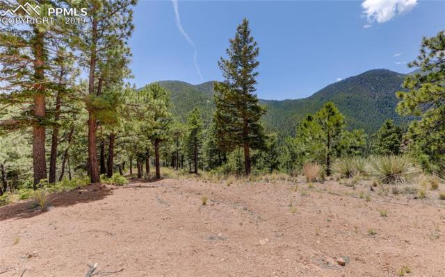 5565 Founders Place, Manitou Springs, CO 80829 (#1901713) :: The Treasure Davis Team