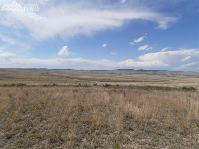 000 Fairplay Road, Calhan, CO 80808 (#1926589) :: Perfect Properties powered by HomeTrackR