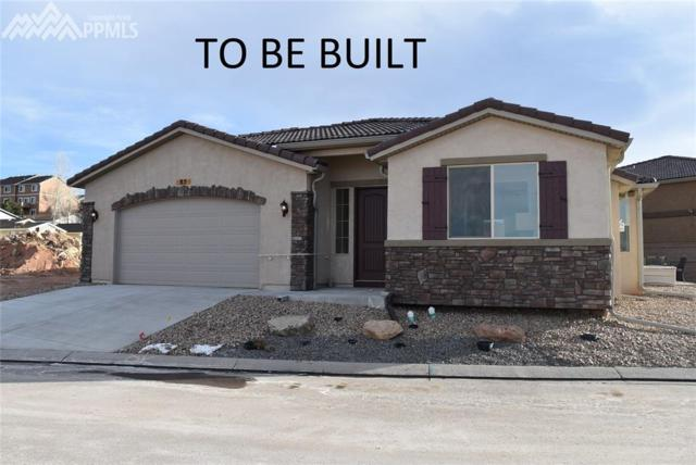 185 Mountain Spirit Point, Colorado Springs, CO 80904 (#1933013) :: The Treasure Davis Team