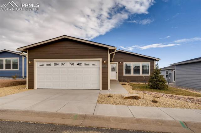 4426 Gray Fox Heights, Colorado Springs, CO 80922 (#1939967) :: Action Team Realty