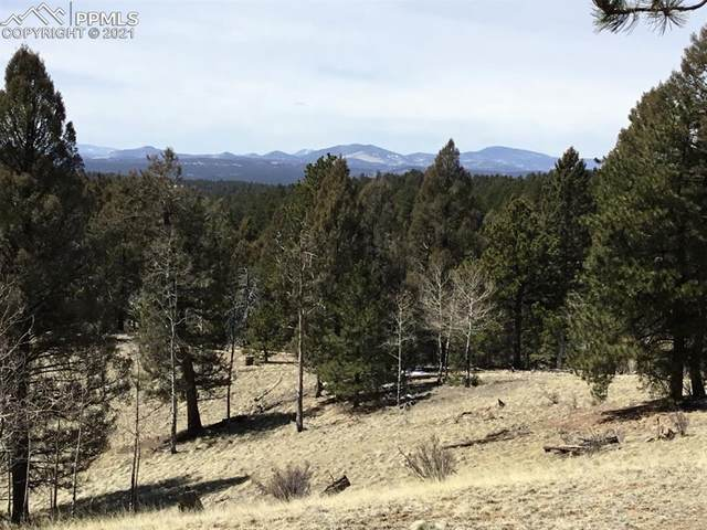 9623 W Highway 24 Highway, Divide, CO 80814 (#1940718) :: The Dixon Group