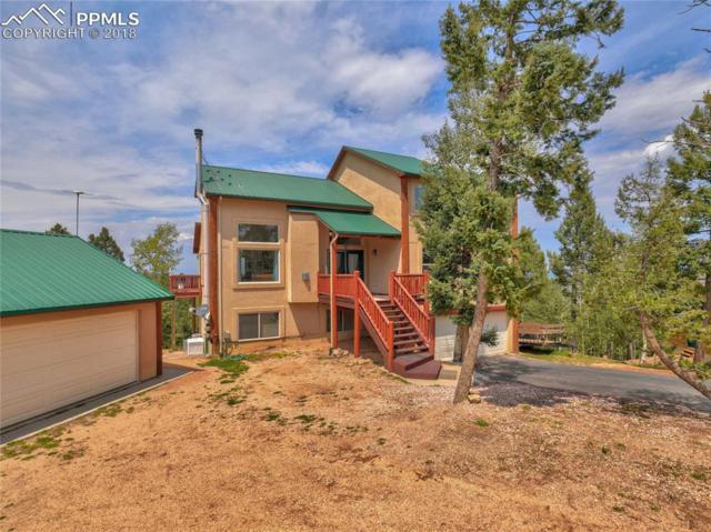 557 Potlatch Trail, Woodland Park, CO 80863 (#1966164) :: Harling Real Estate