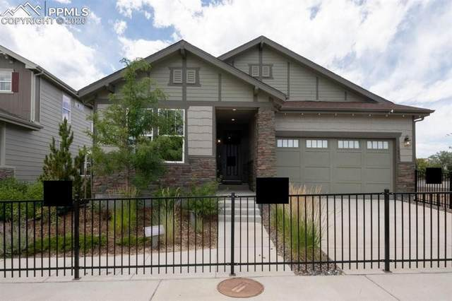 3893 Forever Circle, Castle Rock, CO 80109 (#1997511) :: 8z Real Estate