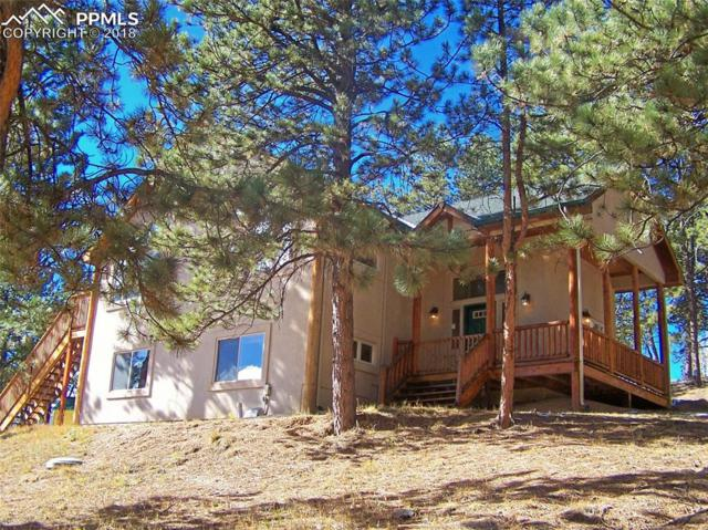 886 Blue Mesa Drive, Divide, CO 80814 (#2002161) :: The Peak Properties Group
