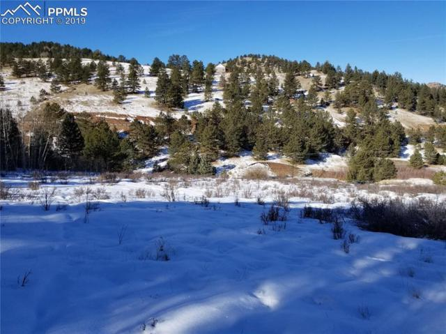 TBD4 Teller 1 Road, Cripple Creek, CO 80813 (#2039299) :: CENTURY 21 Curbow Realty