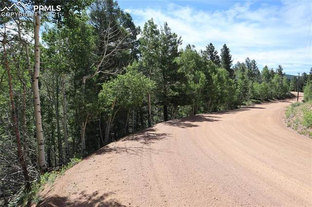 00 May Queen Drive, Cripple Creek, CO 80813 (#2040421) :: Action Team Realty